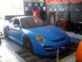 bluecardyno